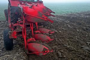 System uprawy roli a zachwaszczenie pszenicy ozimej