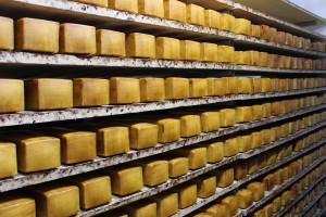 Dobre sygnały dla rynku mleka z nowozelandzkiej giełdy