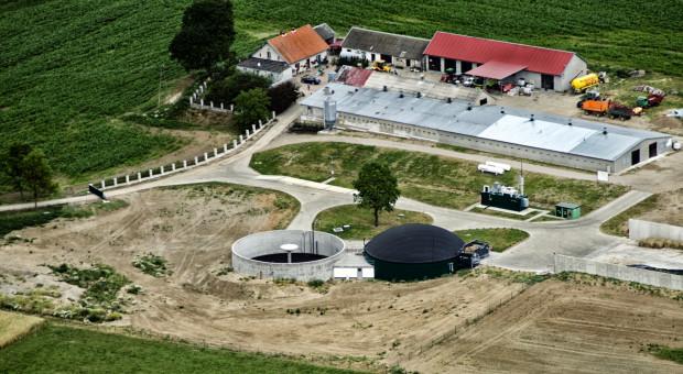 Opłacalna biogazownia w gospodarstwie rolnym