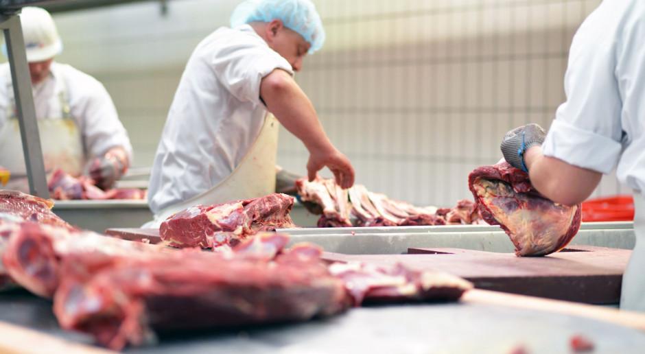 Greenpeace protestuje przeciwko taniemu mięsu w sklepach