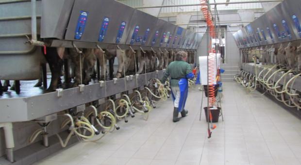 Odwołany został przewodniczący Rady Nadzorczej dużej mleczarni