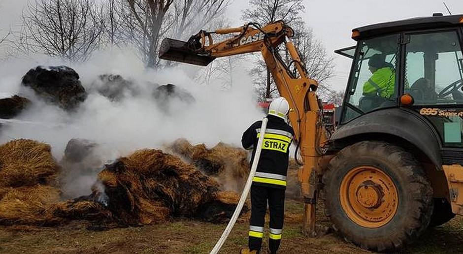 27 krów zginęło w pożarze obory