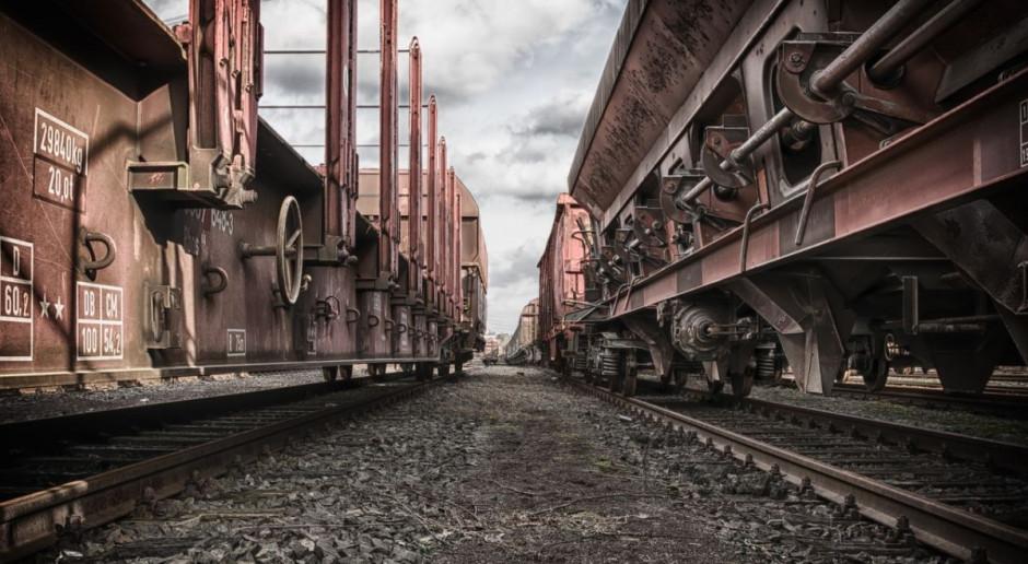 Byki wpadły pod pociąg towarowy koło Radomia