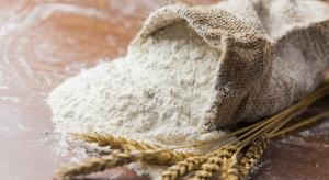 Kolejki po mąkę, zboże tanieje, niektóre skupy wstrzymane