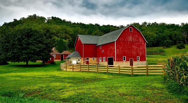 USA: Liczba bankructw gospodarstw rolnych wzrosła o 20 procent