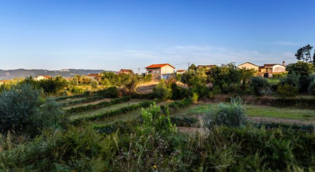 Portugalski rząd wprowadza zachęty dla pracowników gotowych zamieszkać na wsi