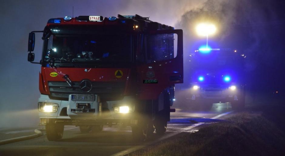 Strażacy uratowali krowę, która wpadła do szamba