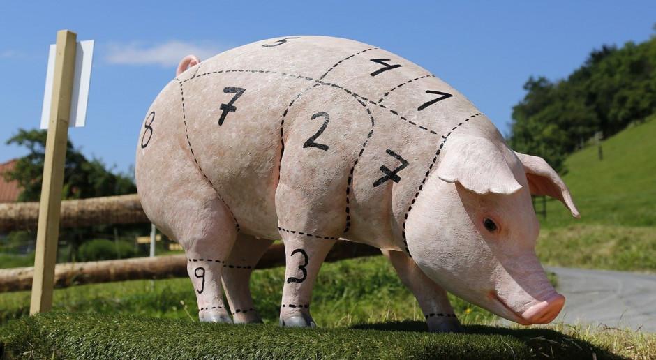 Czy u rolnika można kupić świnię na mięso?