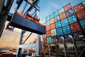 MRiRW poszukuje możliwości eksportowych dla polskich produktów