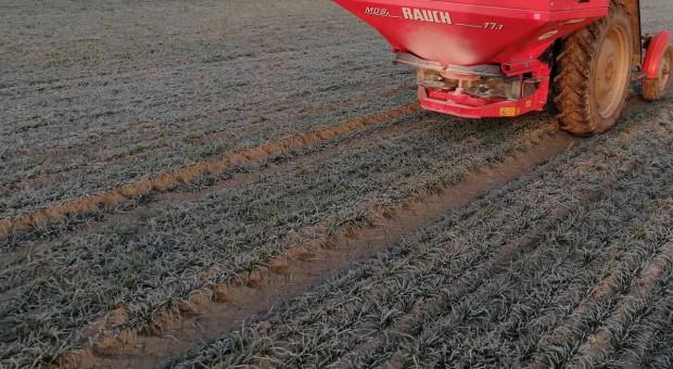 Pojawiły się rozsiewacze nawozów na polach