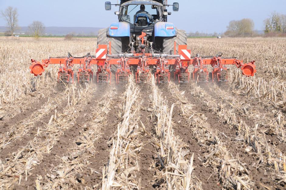 Usługi rolnicze: uprawa pasowa