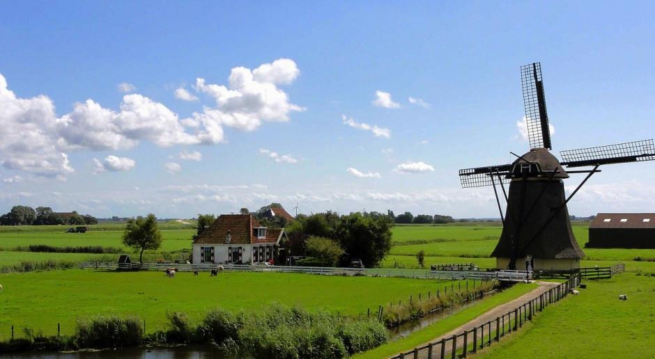 Niderlandy: Coraz więcej rolników ubezpiecza się
