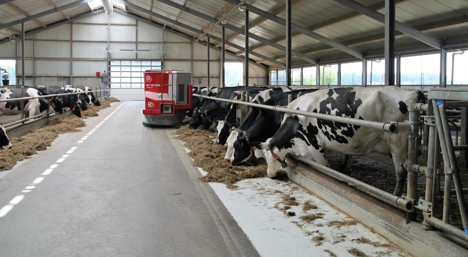 Białoruś planuje otwarcie 45 gospodarstw mlecznych w 2020 roku