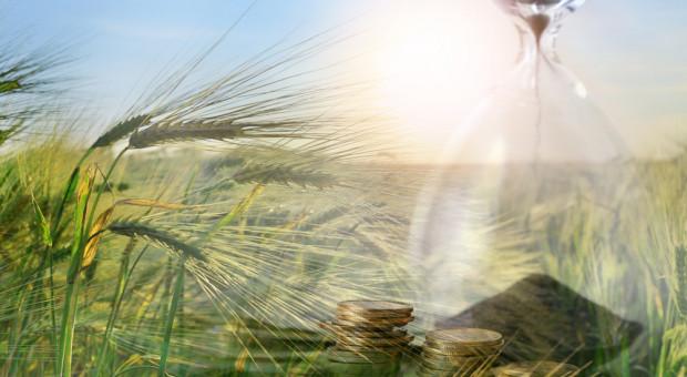 Ile na rolnictwo w 2020 roku?
