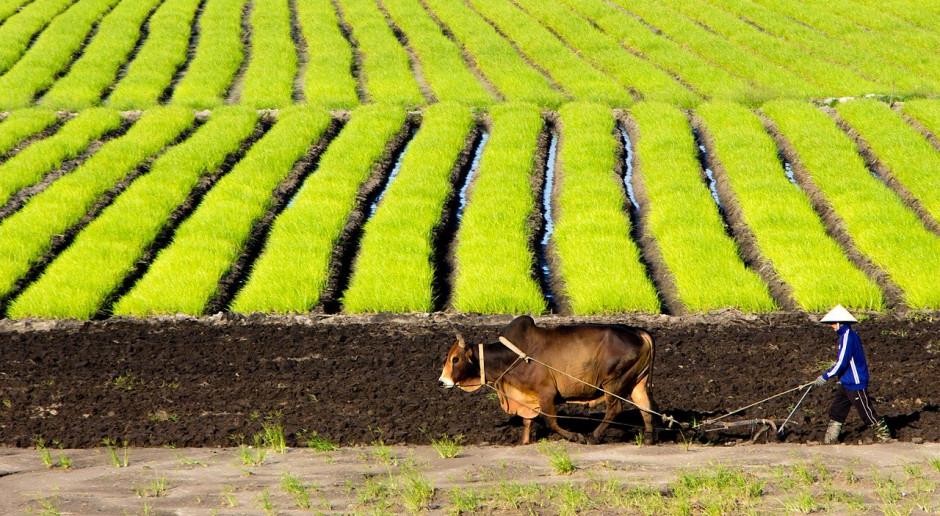 Parlament UE zatwierdził umowę handlową i inwestycyjną z Wietnamem