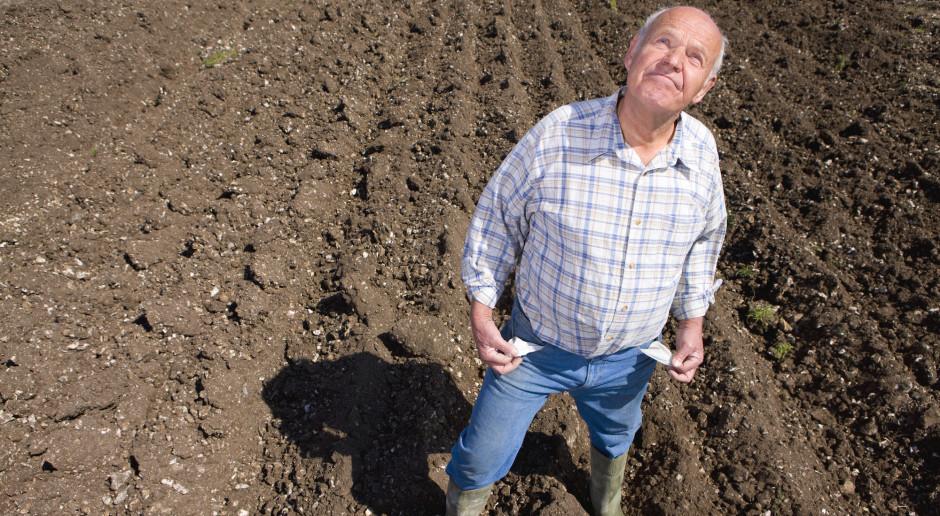 Rolnik żyje jak pączek w maśle?