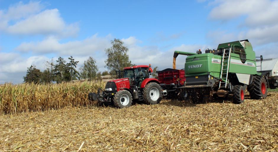 Ukraina: przez 9 lat średni plon kukurydzy wzrósł o prawie 60 proc.