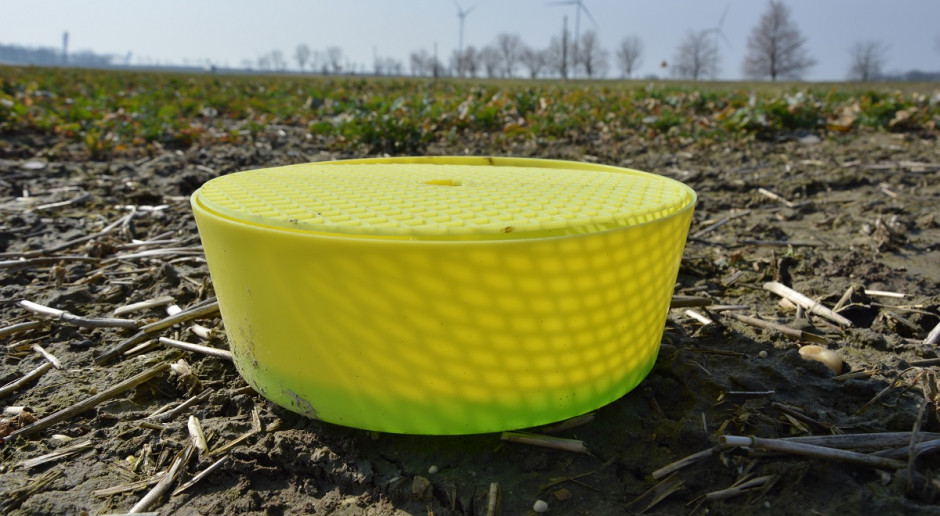 Żółte naczynia na pola