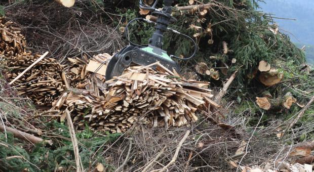 Darmowe paliwo z biomasy zamiast węgla dla domu