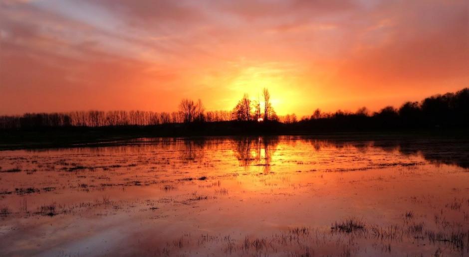 Powódź: Duńscy i brytyjscy rolnicy nie mogą pracować w polu