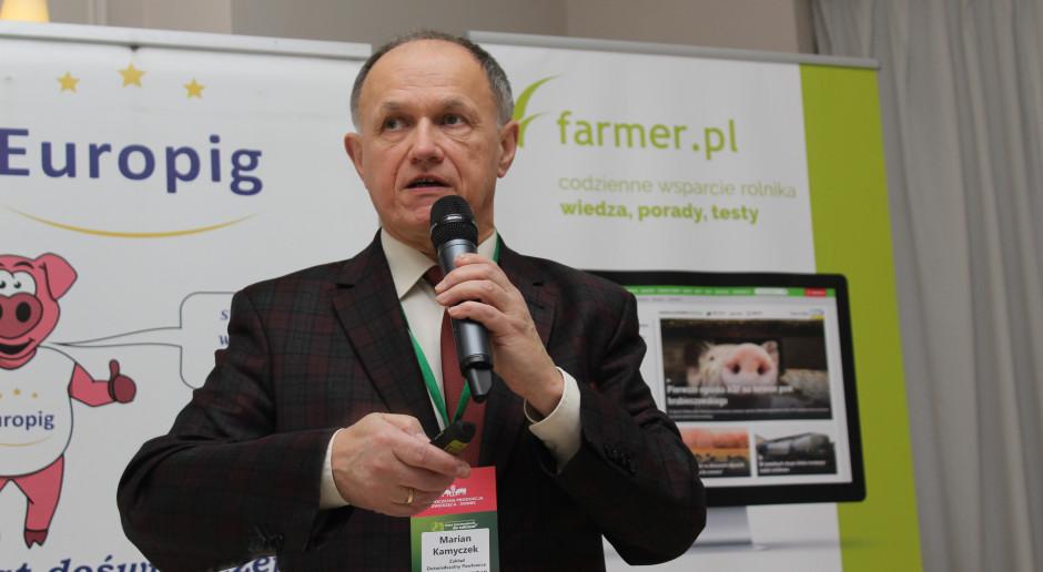 Aktualny rynek wieprzowiny i prognozy na kolejne miesiące