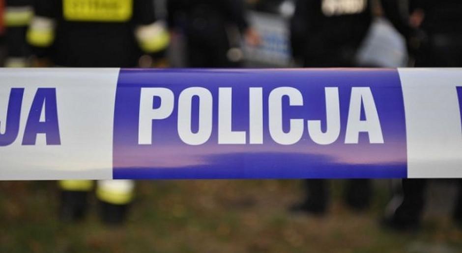 Podczas poszukiwań padłych dzików pod Tarnobrzegiem znaleziono ludzkie zwłoki