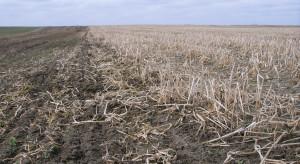 Francja: W uprawie konserwującej nadal można używać glifosat
