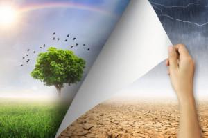 Pomoc po suszy – do poprawy