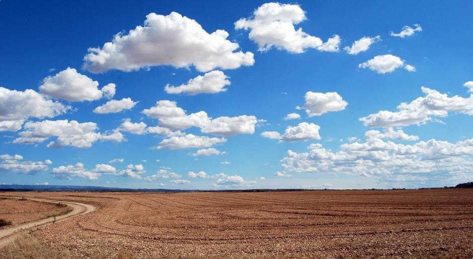 Rosja chce znacząco zwiększyć powierzchnię użytków rolnych