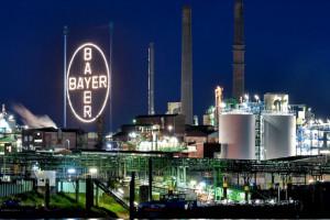 Bayer z zyskiem za 2019 r., pomimo problemów z glifosatem