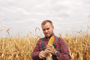 """Jak musi być wykształcony """"Młody rolnik"""" z PROW?"""