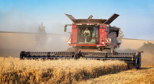 UGA: Ukraina zbierze mniej niż 93 mln ton zbóż i nasion oleistych
