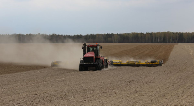 Jak uprawiać glebę pod zboża jare przy niedoborze wody?
