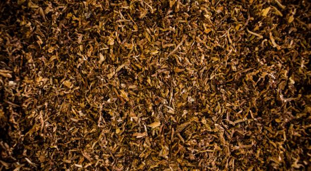 Udaremniono przemyt ponad 1,2 tony suszu tytoniowego