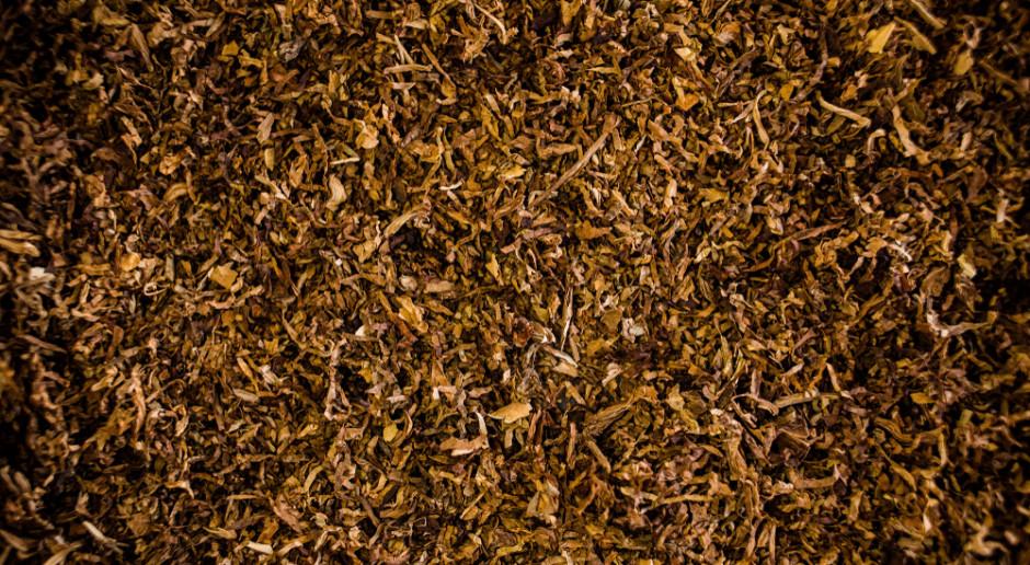 KAS wykryła 2 tony nielegalnego tytoniu wartego 1,5 mln zł