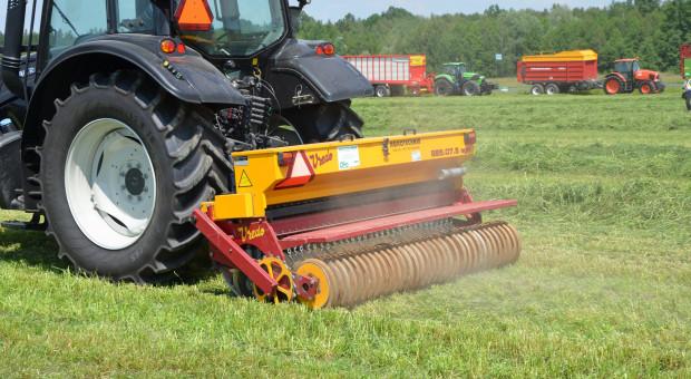 Renowacja łąk: kiedy, jak i czym? Cz. 3