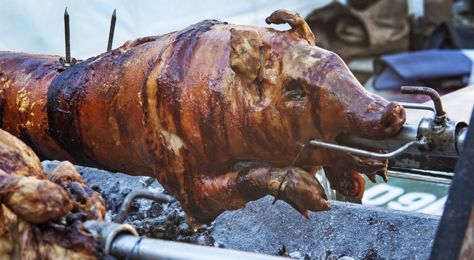 Czy u rolnika można kupić świnię na mięso? – część II