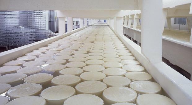 Koronawirus: Stabilne ceny przetworów mlecznych w UE