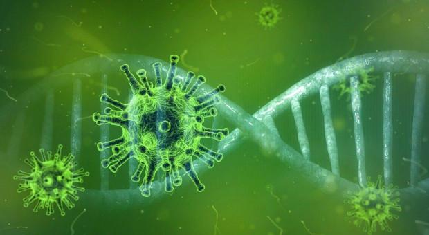 IOR – PIB oferuje pomoc w diagnostyce koronawirusa