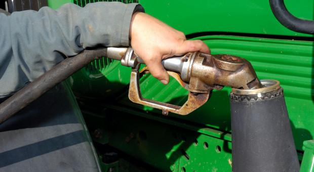 Dalsze obniżki cen ON na stacjach paliw?