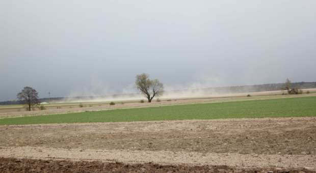 Wody Polskie: Deficyt opadów na południu kraju sięgnął 50%