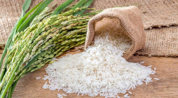 Azja:  eksport ryżu wstrzymany, ceny rosną