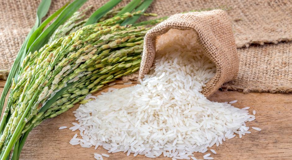 We Włoszech rekordowa konsumpcja ryżu w czasach narodowej kwarantanny