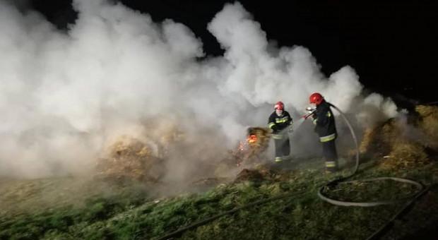 Plaga podpaleń nęka rolników i leśników