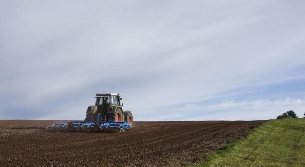Copa-Cogeca: Konieczna ochrona unijnego rynku i wsparcie dla działalności rolniczej