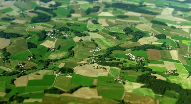 POLPIG: czas epidemii jest zły na wypowiadanie umów dzierżawcom ziemi