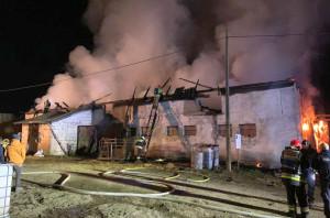 W pożarze pod Lidzbarkiem zginęły dwa cielaki, Foto: KP PSP Lidzbark Warmiński