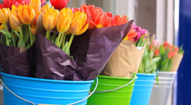 Włochy: Przywrócono sprzedaż kwiatów, branża ogrodnicza w kryzysie