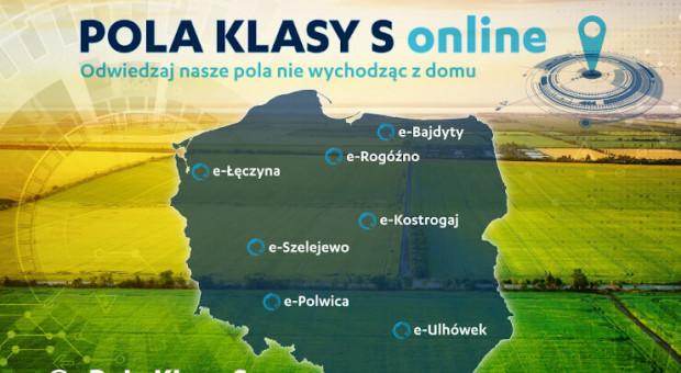 Pola Klasy S Syngenty dostępne online!