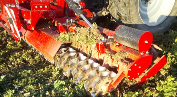 Przygotowanie pola pod siew buraków w uprawie bez pługa